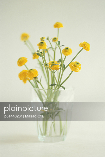 Bunch of yellow flowers in glass vase