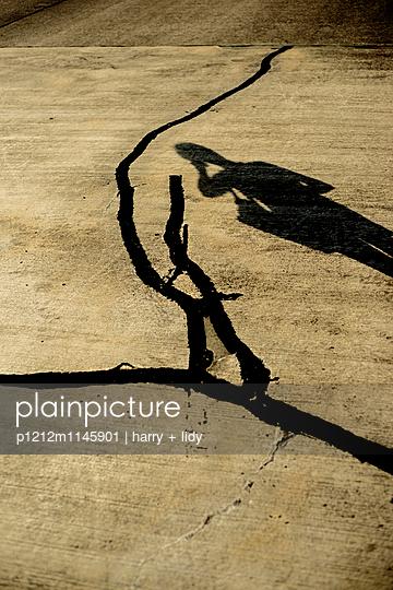 Schatten einer Frau auf dem Asphalt - p1212m1145901 von harry + lidy