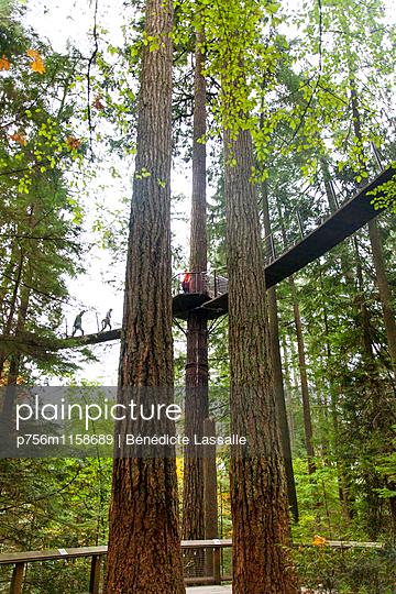 Kanada - p756m1158689 von Bénédicte Lassalle