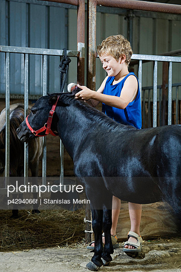 Boy brushing miniature horse\'s mane