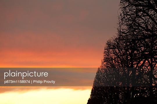 p873m1158974 von Philip Provily
