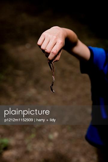 Junge hält Regenwurm in der Hand - p1212m1152939 von harry + lidy