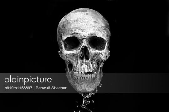 p919m1158897 von Beowulf Sheehan