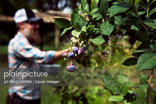 p1166m1163684 von Cavan Images