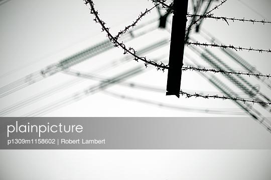 p1309m1158602 von Robert Lambert