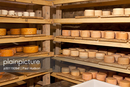 A selection of goat\'s cheese wheels on shelves