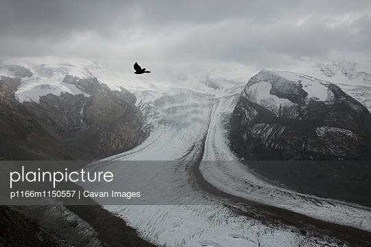 p1166m1150557 von Cavan Images