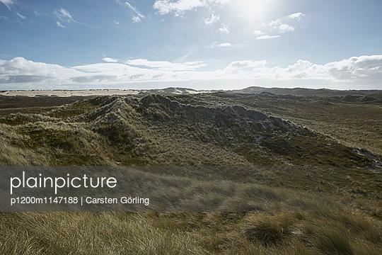 Dünenlandschaft auf Sylt - p1200m1147188 von Carsten Görling