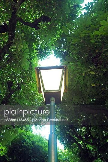 Unter Kastanienbäumen - p338m1154851 von Marion Beckhäuser