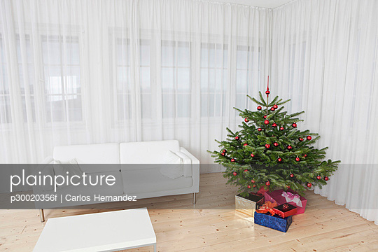 Room with christmas tree and couch