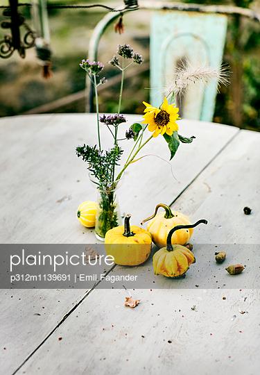 Yellow pumpkin sand flowers in vase