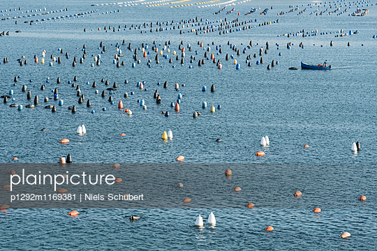 Muschelzuchtanlagen - p1292m1169381 von Niels Schubert