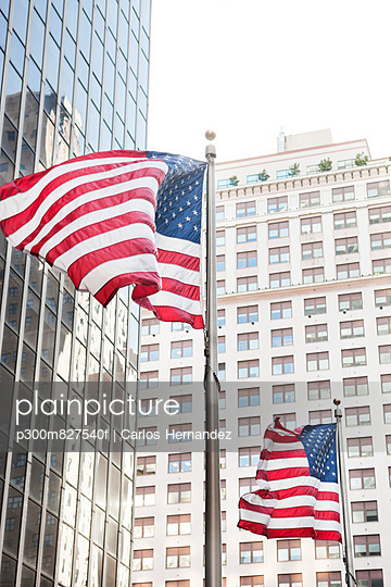 New York, View of American flag