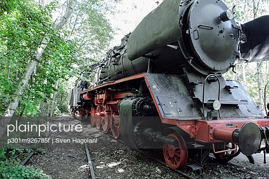 Steam train engine in forest