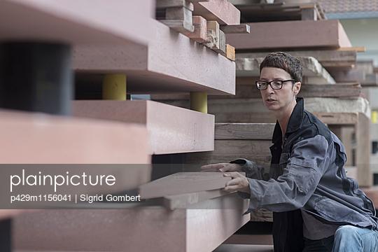 p429m1156041 von Sigrid Gombert