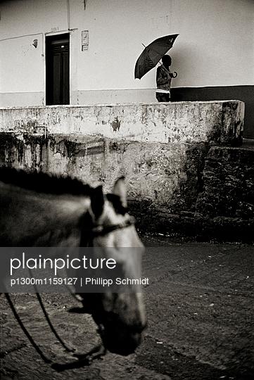 Pferd in Kolumbien - p1300m1159127 von Philipp Schmidt