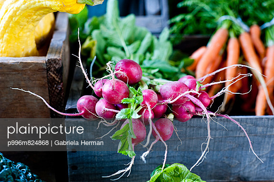 Fresh produce at a farmers market including radishes, carrots and squash.