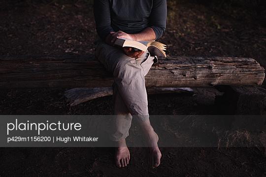 p429m1156200 von Hugh Whitaker