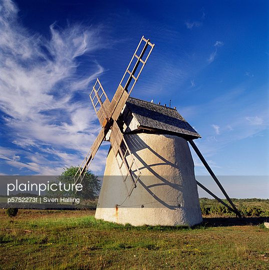 Windmill on ground low angle view