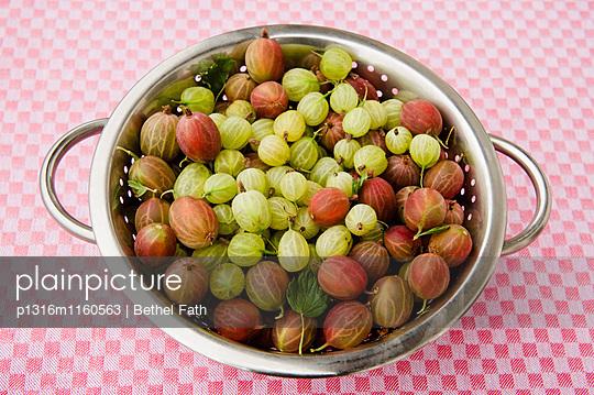 Frisch geerntete Stachelbeeren, Ernte, Obst - p1316m1160563 von Bethel Fath