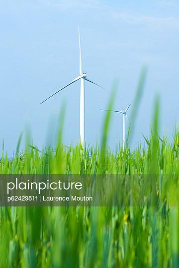 Wind turbines in field of tall grass