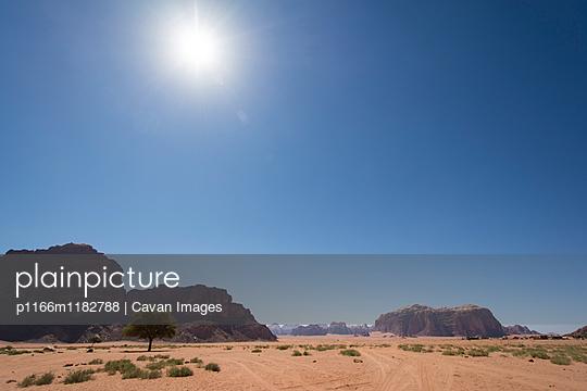 p1166m1182788 von Cavan Images