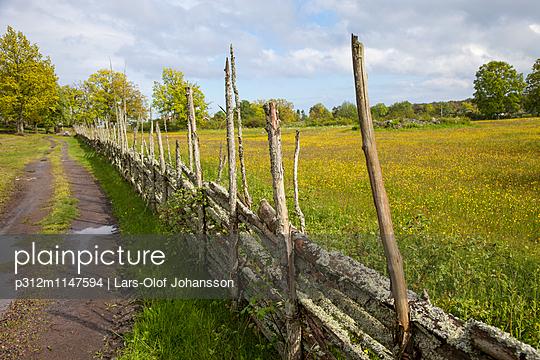 p312m1147594 von Lars-Olof Johansson