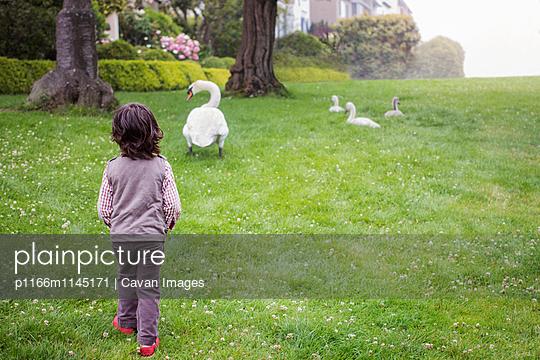 p1166m1145171 von Cavan Images