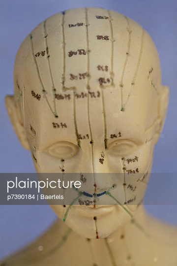 Learning acupuncture