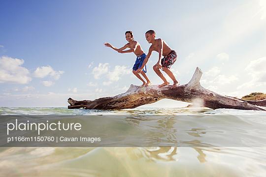 p1166m1150760 von Cavan Images