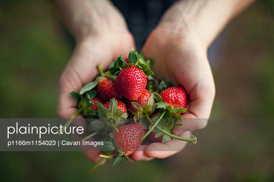 p1166m1154023 von Cavan Images