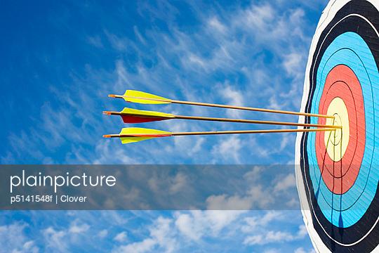 Arrows in bullseye of target