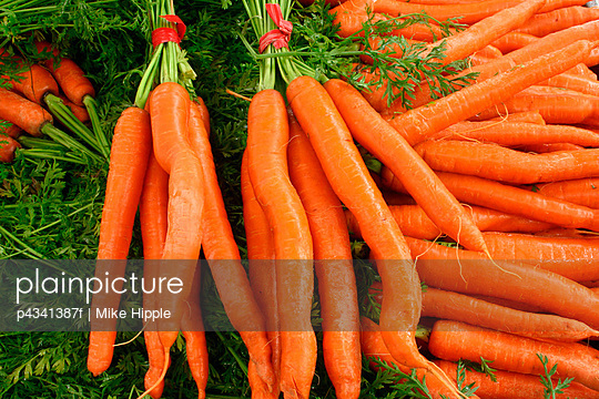 Fresh carrots and coriander leaves, high angle view