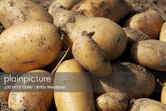 Full frame shot of fresh potatoes