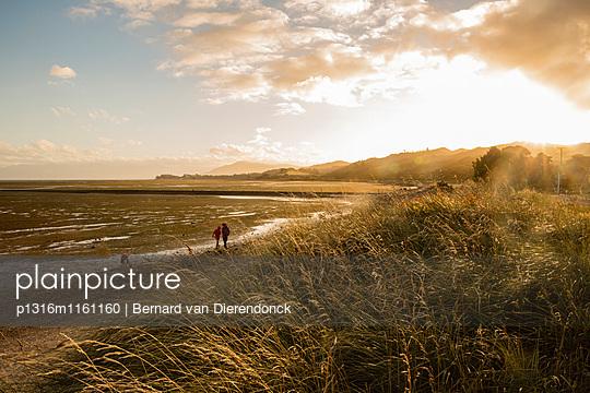 Später Nachmittag und Ebbe bei Puponga, Farewell Spit, Golden Bay, Südinsel, Neuseeland - p1316m1161160 von Bernard van Dierendonck