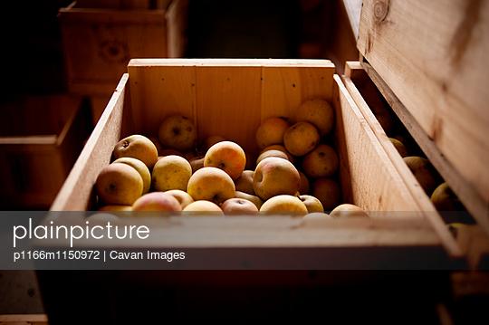 p1166m1150972 von Cavan Images