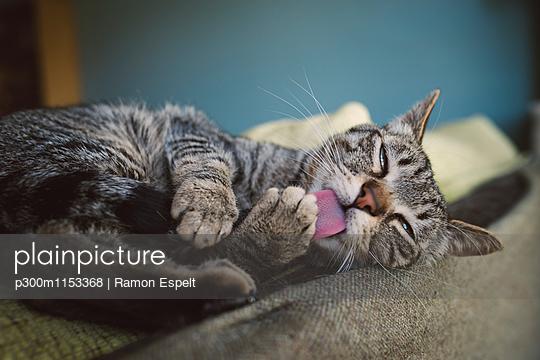 p300m1153368 von Ramon Espelt
