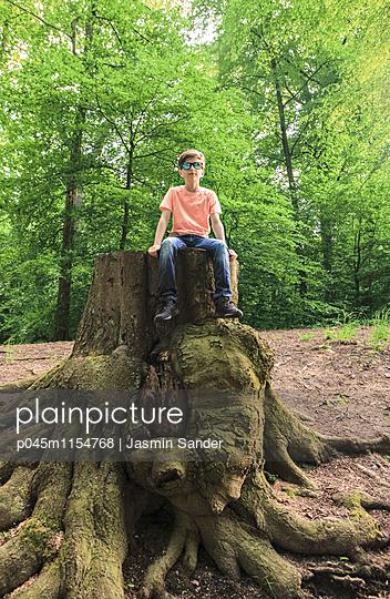 Den Wald entdecken - p045m1154768 von Jasmin Sander