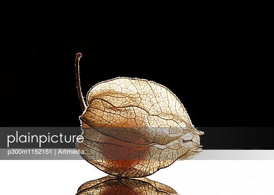 p300m1152151 von Artmedia