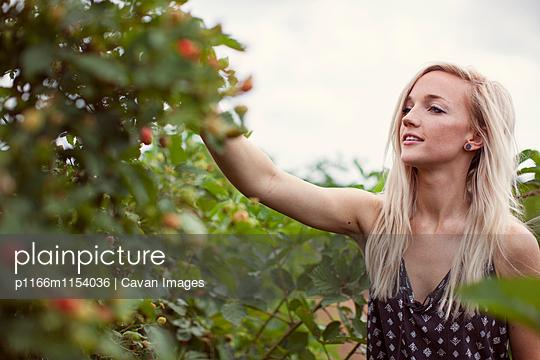 p1166m1154036 von Cavan Images