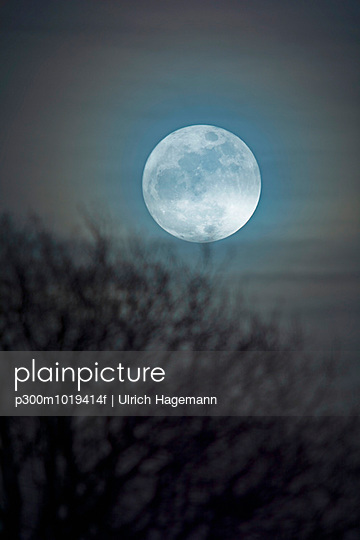 Germany, moon rise with bare tree in the foreground