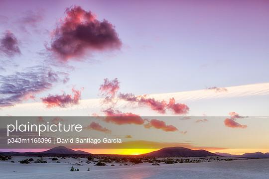 p343m1168396 von David Santiago Garcia