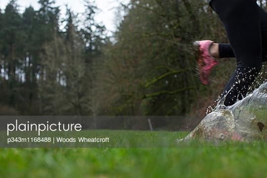 p343m1168488 von Woods Wheatcroft