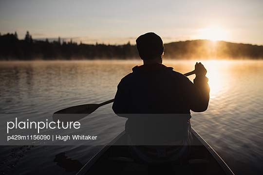 p429m1156090 von Hugh Whitaker