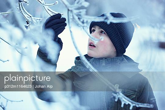 p312m1164623 von Johan Alp
