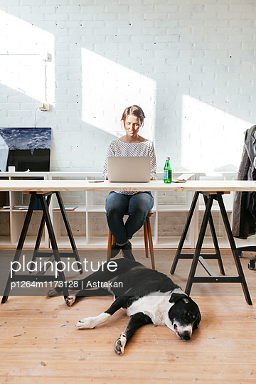 Dog relaxing on hardwood floor while woman working on laptop at desk in office