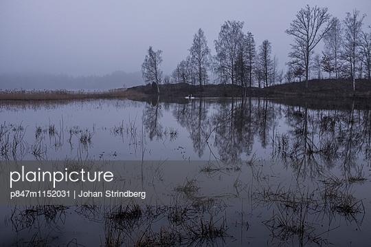 p847m1152031 von Johan Strindberg