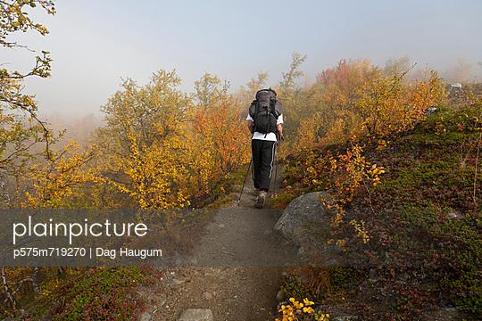 Teenage boy hiking, rear view