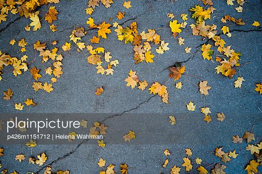 p426m1151712 von Helena Wahlman