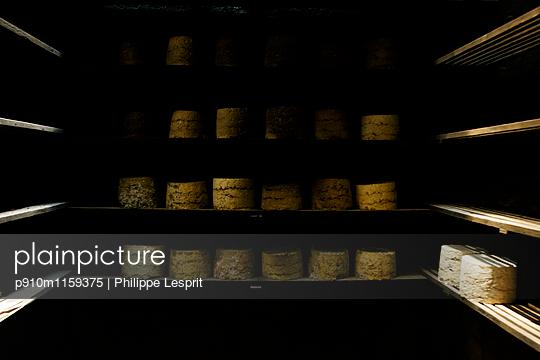 Reifungsprozess von Käselaiben in Käserei - p910m1159375 von Philippe Lesprit